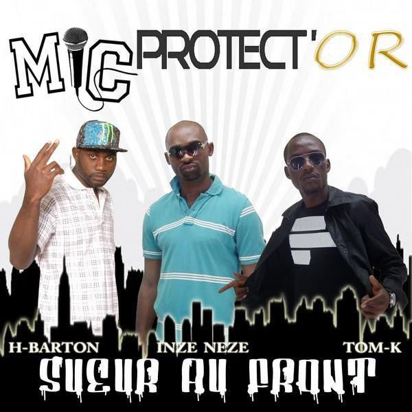 MIC PROTECTOR