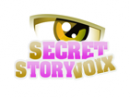 Photo de secret-story-voix