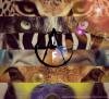 AnimalLiberationFront
