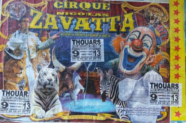 cirque nicolas zavatta a thouars