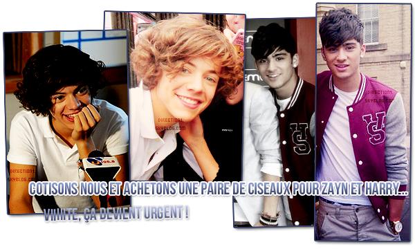 Meilleurs moments des One Direction + Radio Tour