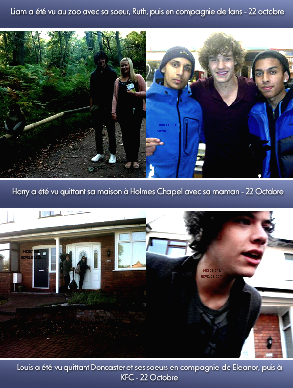 Harry + Louis + Liam + Niall