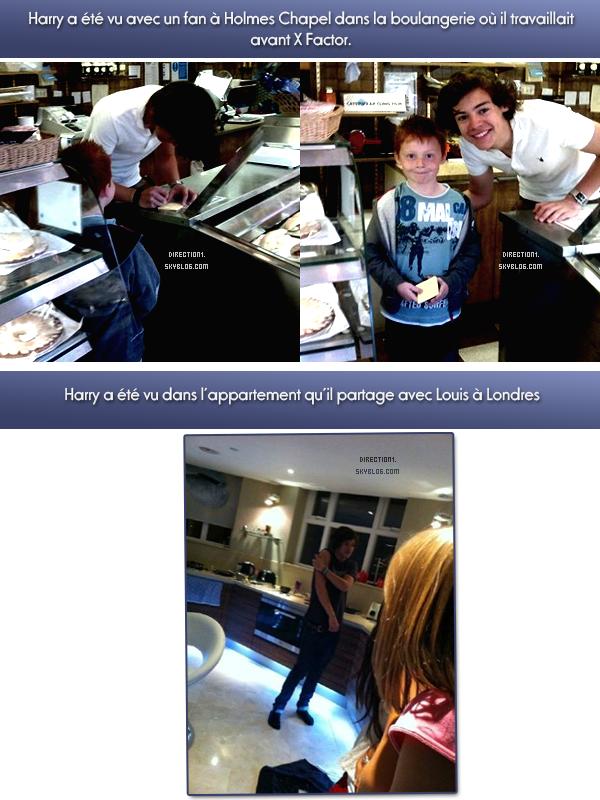 Gotta Be You + Tour + Harry + Photoshoot