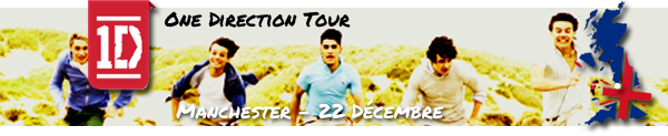One Direction Tour