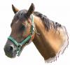 Equestrian-F