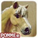 Photo de POMMEe