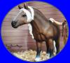 schleich-poneys
