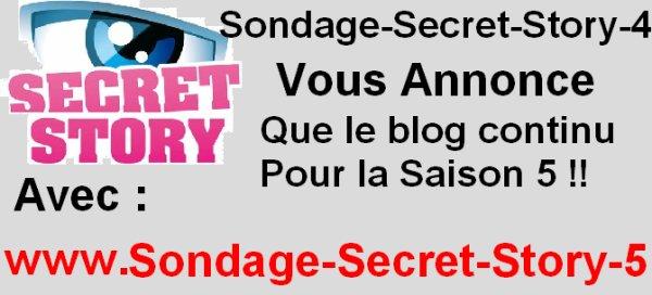 LE BLOG CONTINU POUR LA SAISON 5 , AVEC => SONDAGE-SECRET-STORY-5.