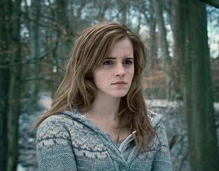 Emma Watson et Jason Segel dans le premier film de Seth Rogen.