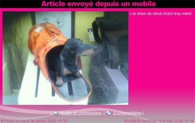 MOBILE - La magie du MMS !