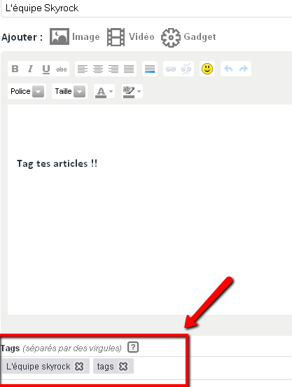 BLOG : Tag ton article !