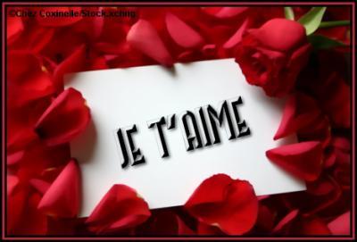 pour toi mon amour je veux te dire - sisi82