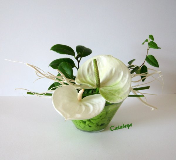 Petit centre de table blog de cataleya art floral - Art floral moderne centre de table ...