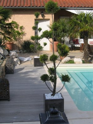 Saison 2009 ambiance zen amenagement jardin et for Ambiance piscine