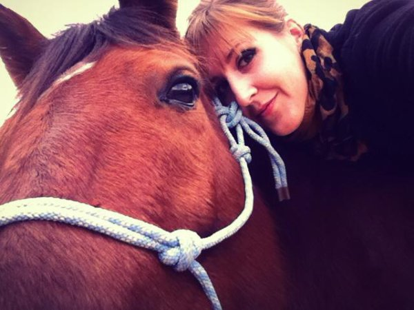 Free3-Horse