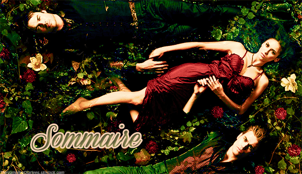 • TheVampiireDiariees  »       Sommaire