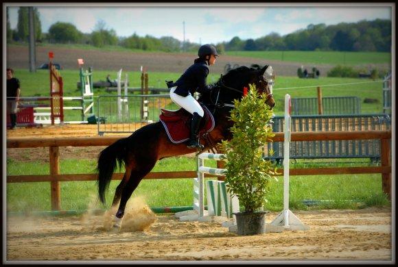 ' ------ - SAISON 2008/2009 : Nos Concours Complets ! - -----'