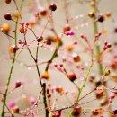 Photo de H0w-t0-Think