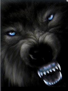 noire et bleut