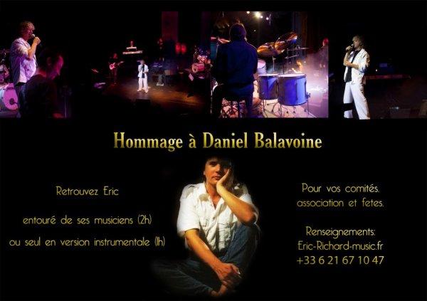 Eric Golos Le 18 Mai 2013 à la Fête Du Chien de Prisches un hommage à Daniel Balavoine