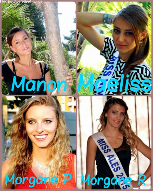 Candidates Miss Languedoc 2015