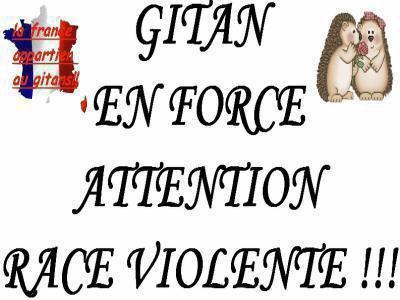 image logo gitan