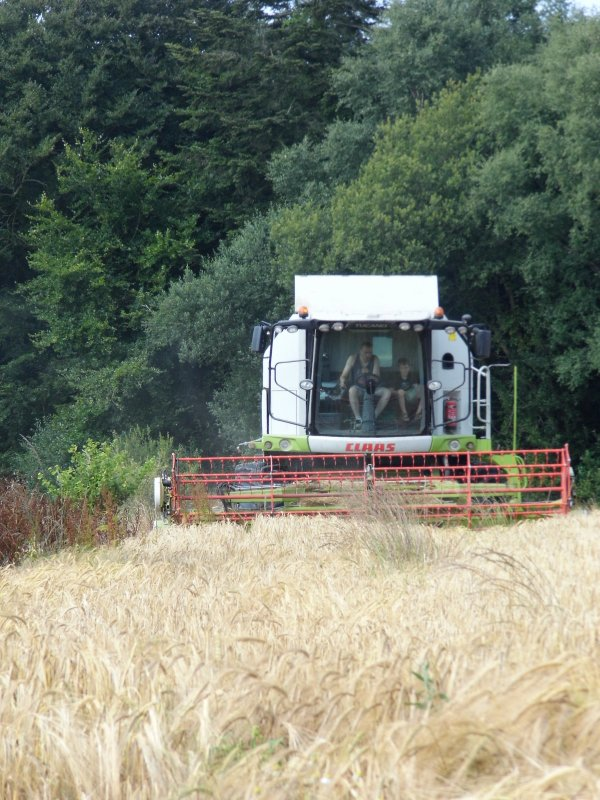 moisson 2013 claas tucano 440 coupe repliable tracteur claas axion remorque rolland