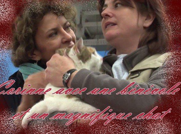 Blog de une femme d honneur isa page 2 une femme d honneur isa - Porte de versailles animaux ...