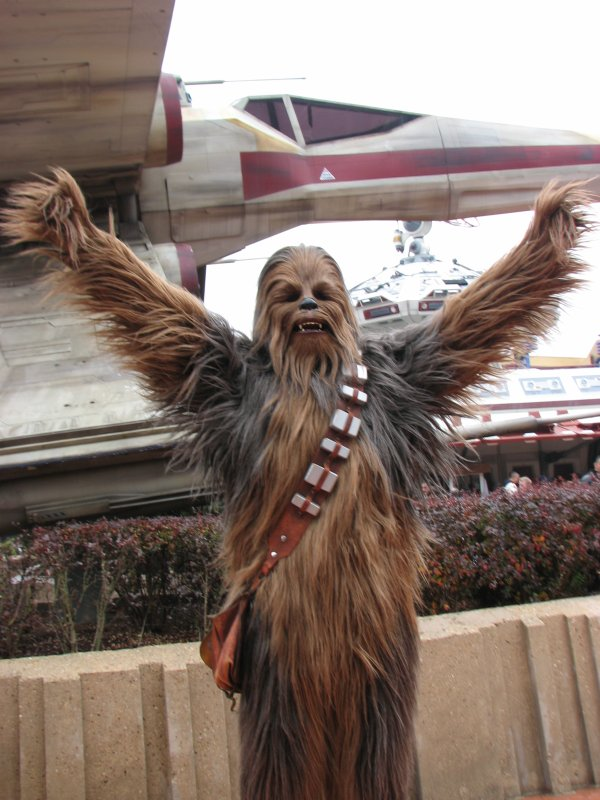 Disneyland 7 novembre 2010 - Chewbacca