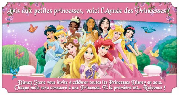 Disney Store - L'année des Princesses !