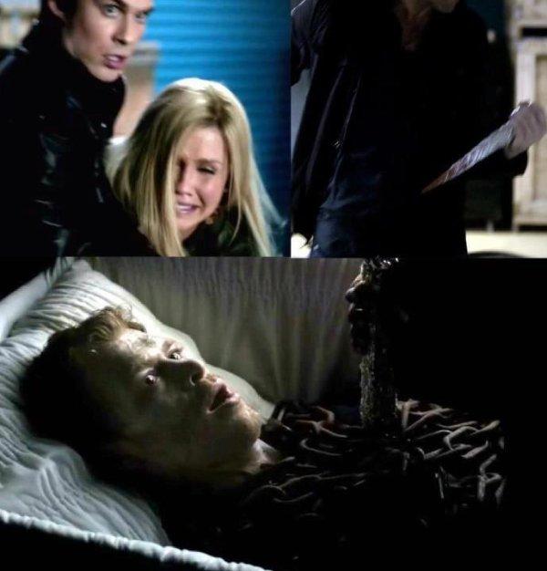 Quizz Vampire Diaries - spécial fête de Noël - Quiz Series tele ...