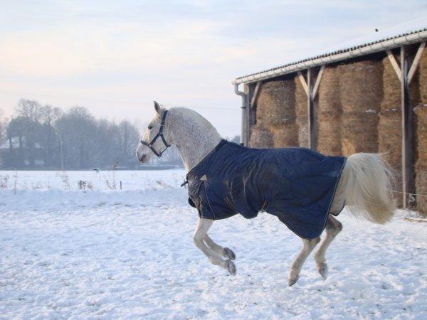 Dans la neige !