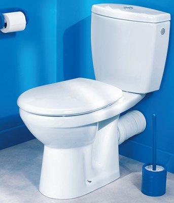 cuvette wc pour handicap blog de framboise1971. Black Bedroom Furniture Sets. Home Design Ideas