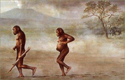Termes Abusifs en Evolution !