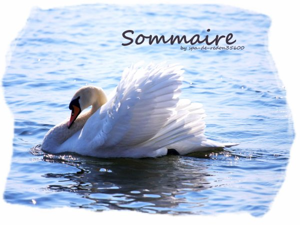""" Sommaire ... """