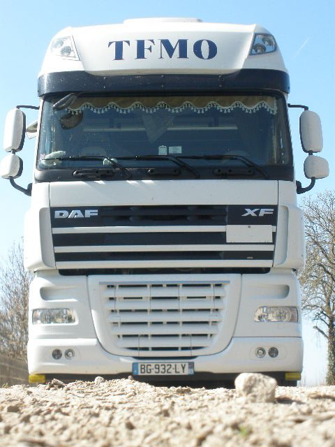 TFMO le DAF � mister Dom