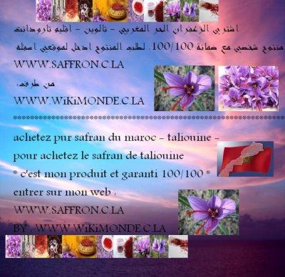 achetez safran pur de taliouine - maroc * - اشتري الزعفران الحر تالوين - المغرب *- 2012 / 2011