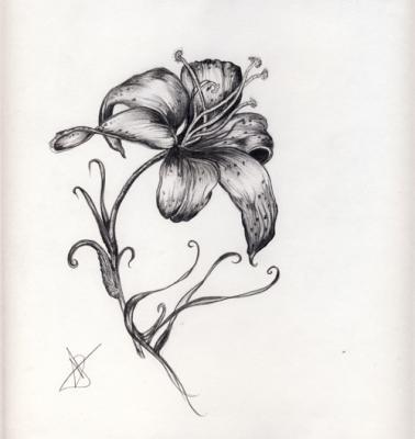 Petite fleur de bordeaux des dessins encor et toujours des dessins - Belle fleur a dessiner ...