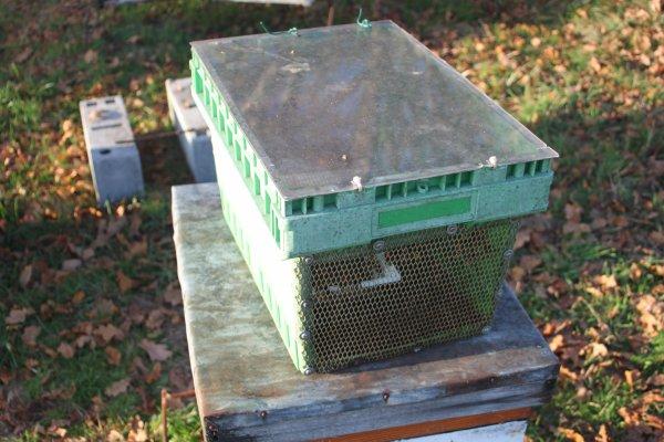 Blog de l abeille rit page 4 blog de 4x4lololab - Piege a frelon maison ...