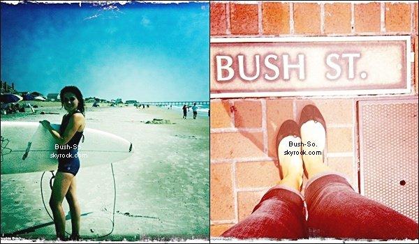 sophia a post plusieurs photos sur son twitter une avec sa planche surf lorsqu 39 elle avait. Black Bedroom Furniture Sets. Home Design Ideas