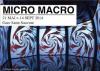 Expo Lille3000 Micro Macro - gare Saint Sauveur