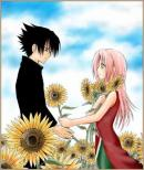 Photo de sasusaku--fic