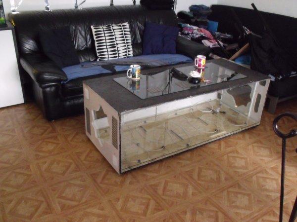 Fabrication d 39 une table basse terrarium blog de elaphes - Table de salon terrarium ...
