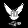 FLY (2010)