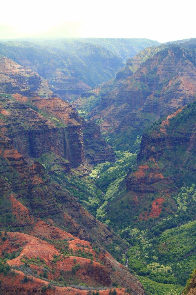 11e voyage Hawaii la suite : photo par moi