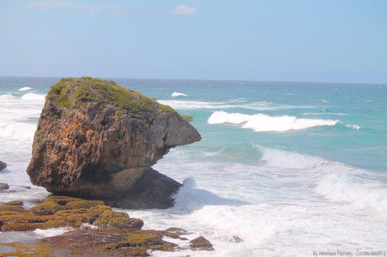 12e voyage Porto Rico : photo par moi