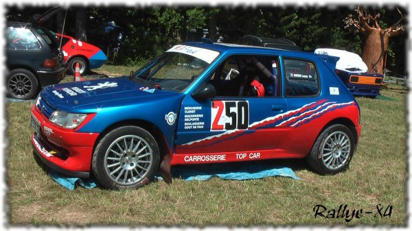 course de c te de grambois 2011 peugeot 205 gti 1oo rallye. Black Bedroom Furniture Sets. Home Design Ideas