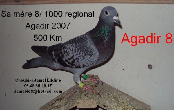 La base: Agadir 8