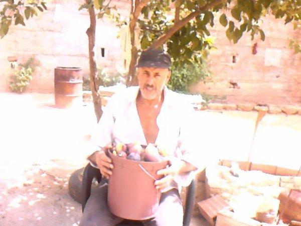 des figues fraîches de mon jardin, qui est ce qui en veut ?