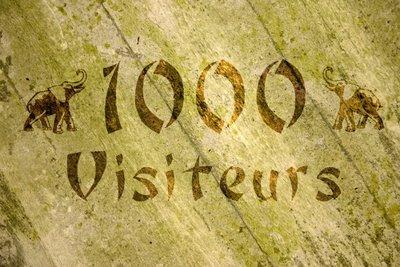 1000 VISITES